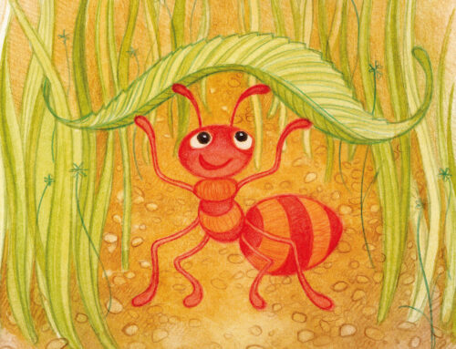 An Ant Called Amy